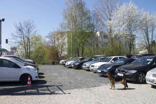 Valet-Parking Auto-Aufsicht Valet-Service